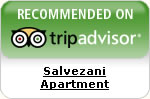 trip advisitor apartments