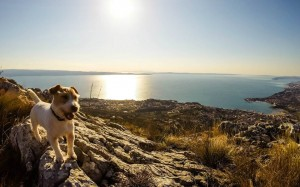 Dalmatia Adventure & Eco Tours 2